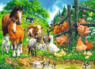 Ravensburger - Animal Get Together 100 pc XXL Puzzle