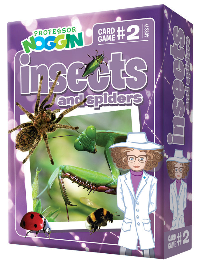 Professor Noggin: Insects and Spiders