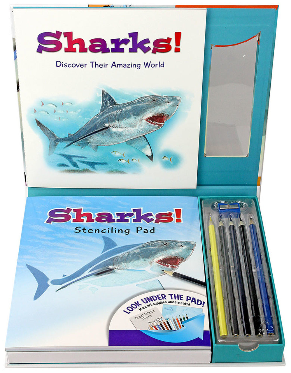 Learn & Draw Sharks