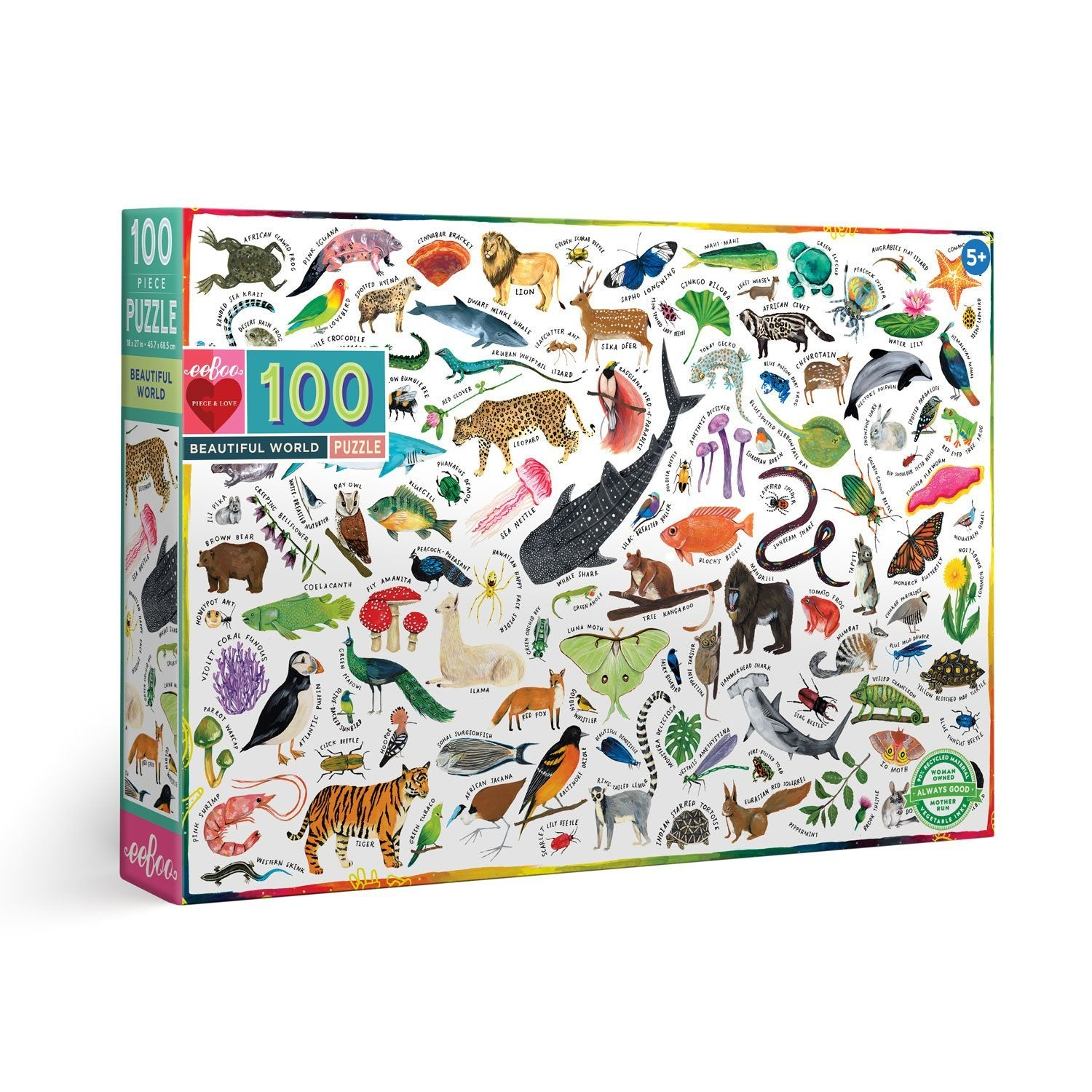 Beautiful World - 100 Piece Puzzle