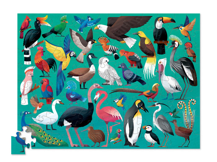 100 Piece Puzzle -  Birds of the World