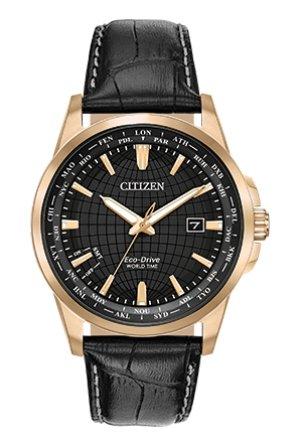 Citizen Eco Drive World Time Perpetual Calendar BX1003-08E - Fifth Avenue Jewellers