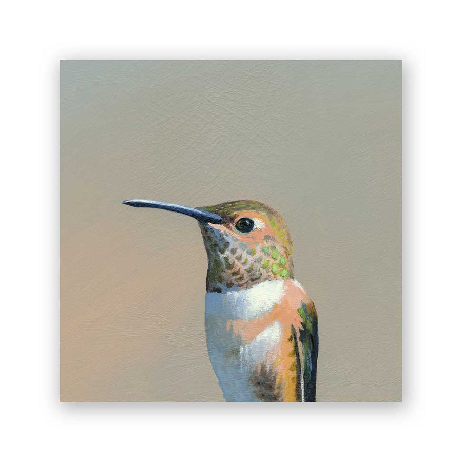 Hummingbird #5 on Birch