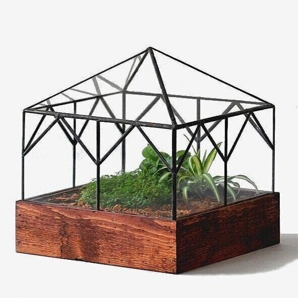 Cottage Terrarium