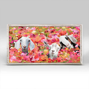 Wildflower Goats Mini Canvas