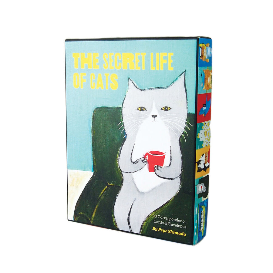 Secret Life of Cats Boxed Note Cards