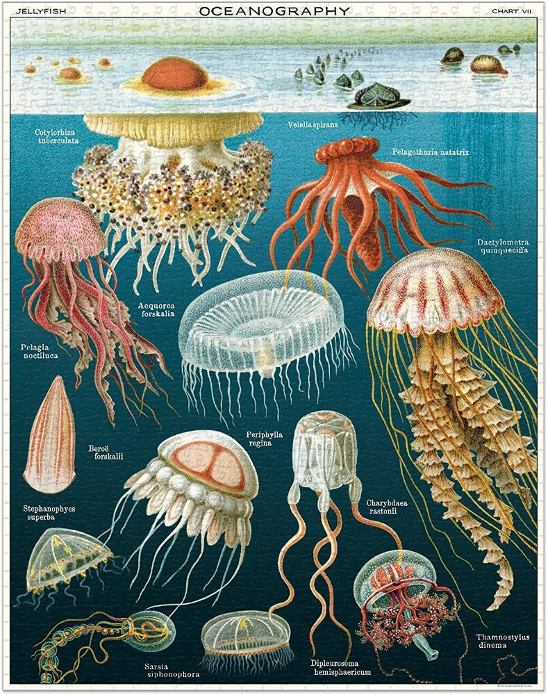 Jellyfish Vintage Puzzle