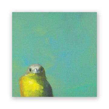 Yellow Bird on Birch