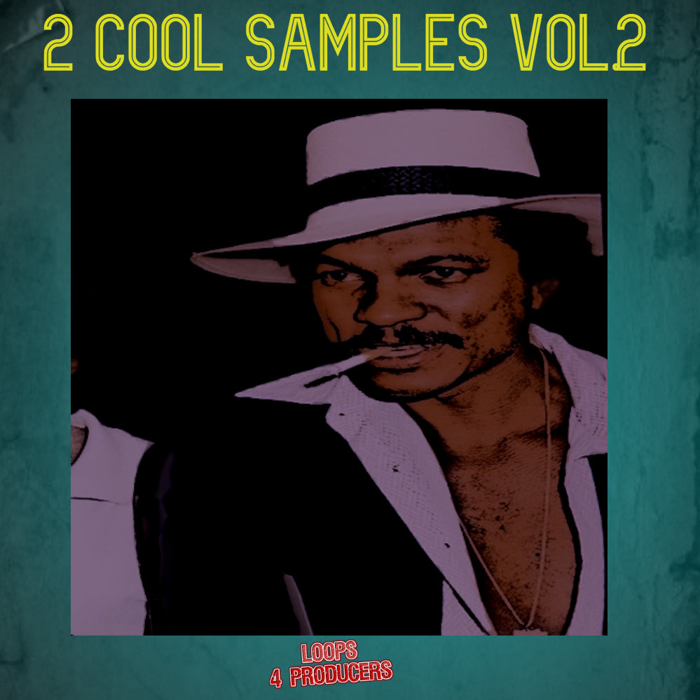 2 Cool Samples Vol.2