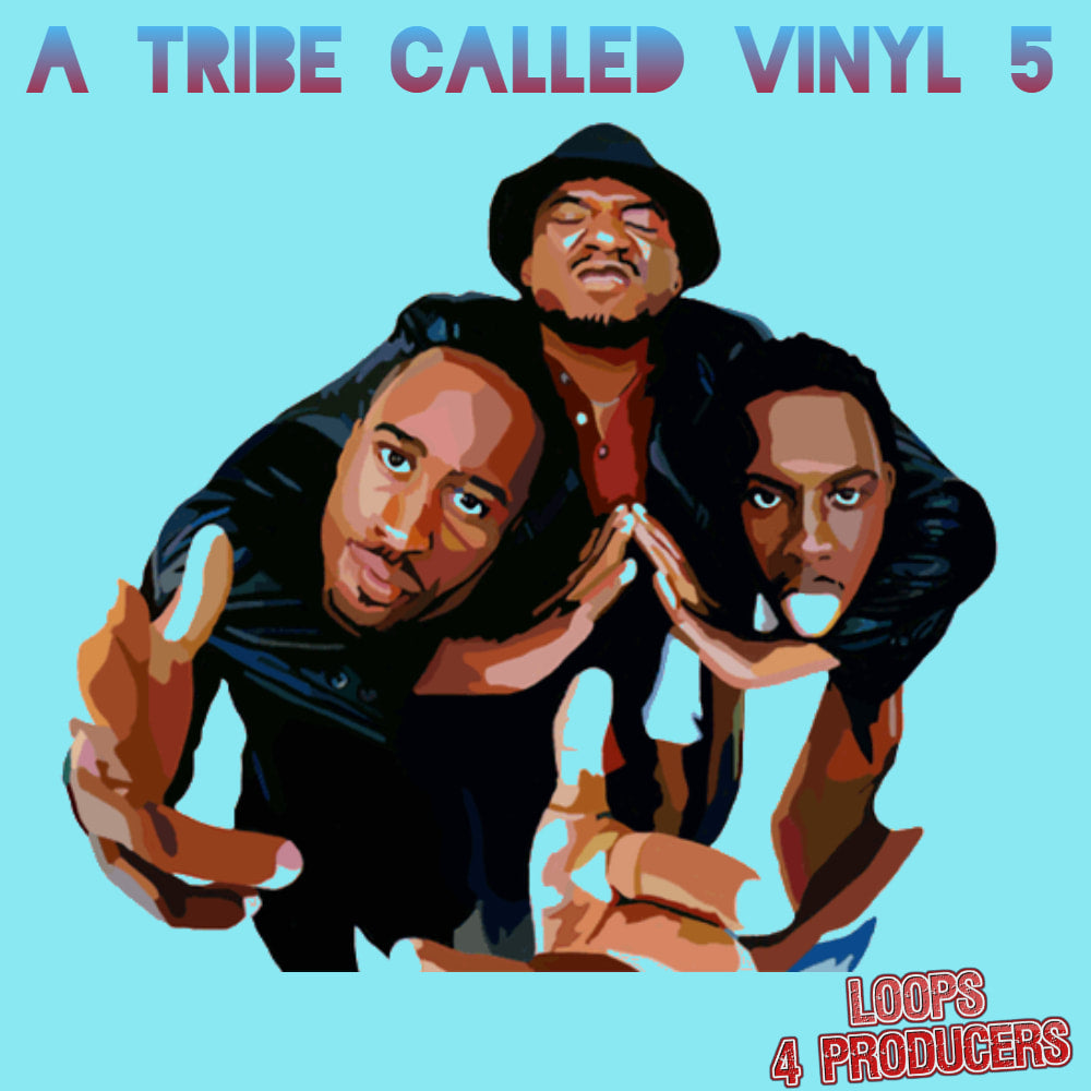 A TRIBE CALLED VINYL 5