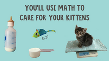 Load image into Gallery viewer, Kitten Math: The World's Most Adorable Math Project