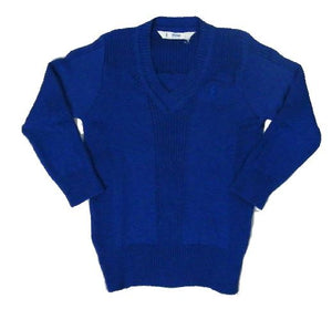 Blue knitted v-neck