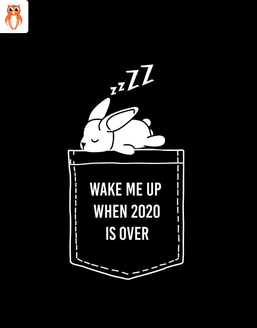 OWL18 Wake Me Up When 2020 is Over Men Graphic T-Shirt