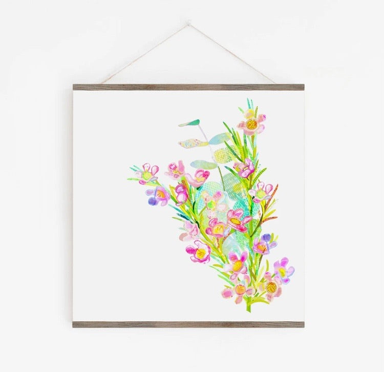 Geraldton Wax Flower Art Print