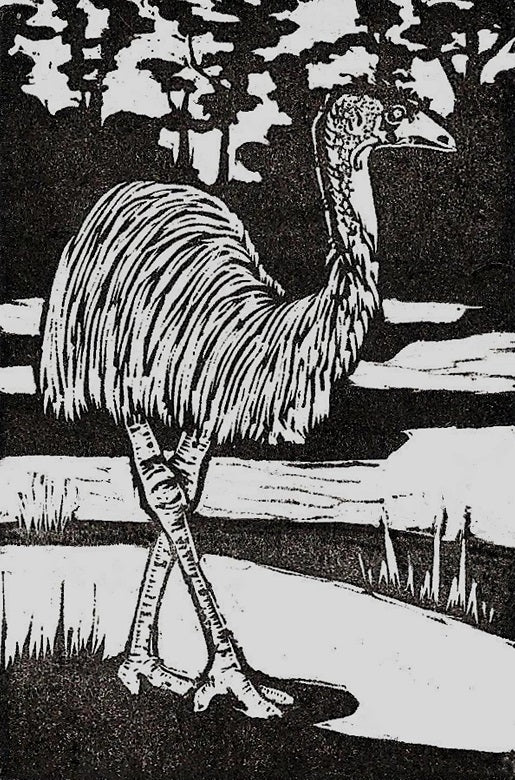 'Emu' - Traditional Artist's Hand Pulled Print by Mellissa Read-Devine.