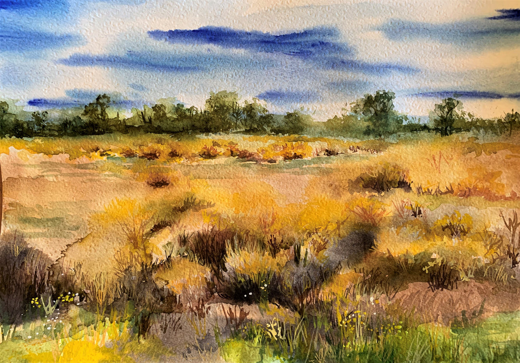 'Road to Lightning Ridge' by Helen Dubrovich