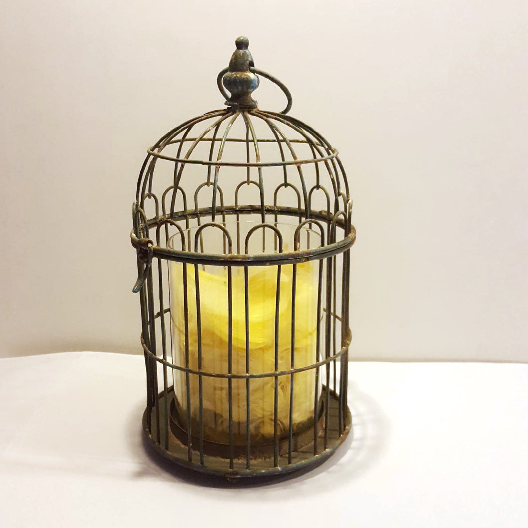 'The Canary has Flown' by Jeanette Prout