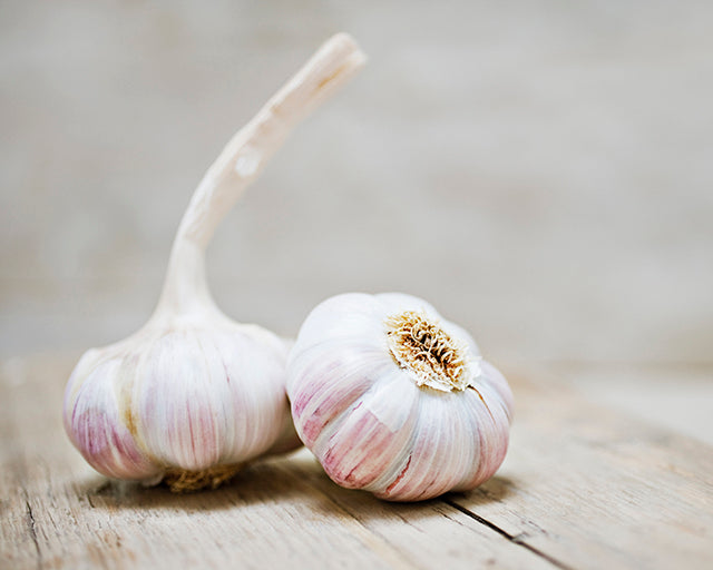 Fresh Garlic (1 Bulb)