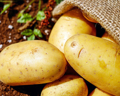 King Edward Potatoes (500g)