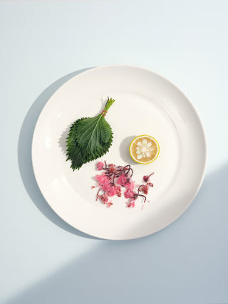 Top view of a large white ceramic dinner plate with a green lead and vibrant bits of food on a light blue background