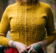 Load image into Gallery viewer, LYS (Little Yellow Sweater)