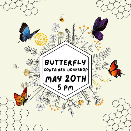 Butterfly Container Workshop
