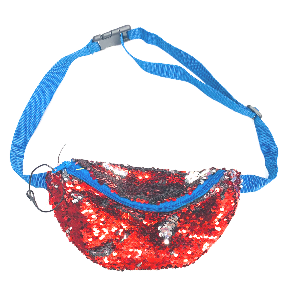 Fannypack/Multi Color