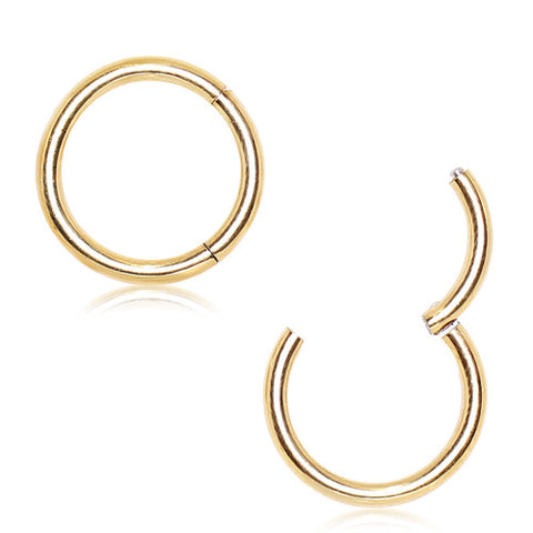 PVD 316L Surgical Stainless Steel Segment Septum Clicker