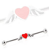 Industrial Barbell with Winged Heart