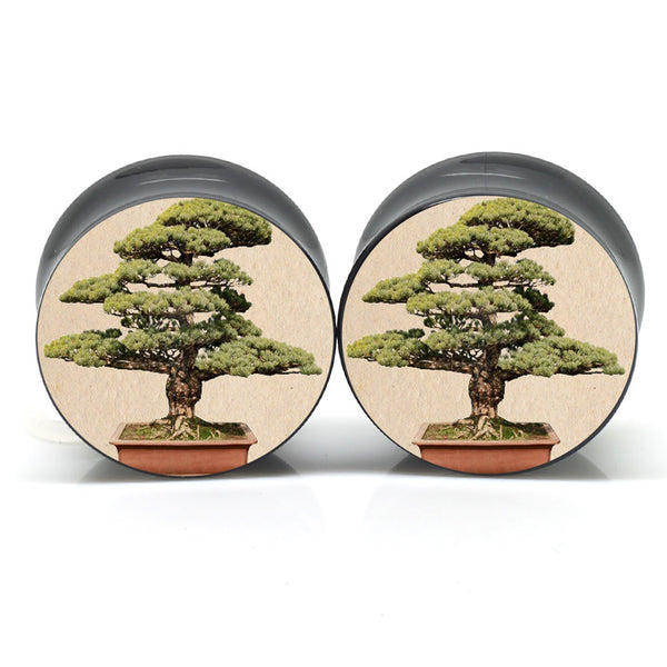 Bonsai Ear Plugs