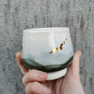 Flying birds Vessel