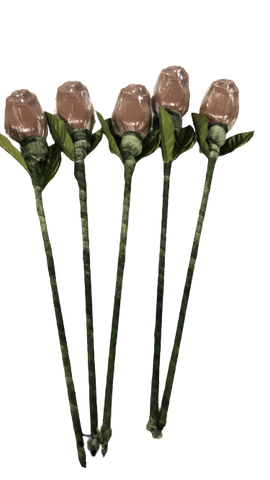 5 Miami Beach Chocolate Roses Bouquet