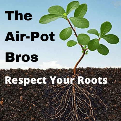 The Air-Pot Bros