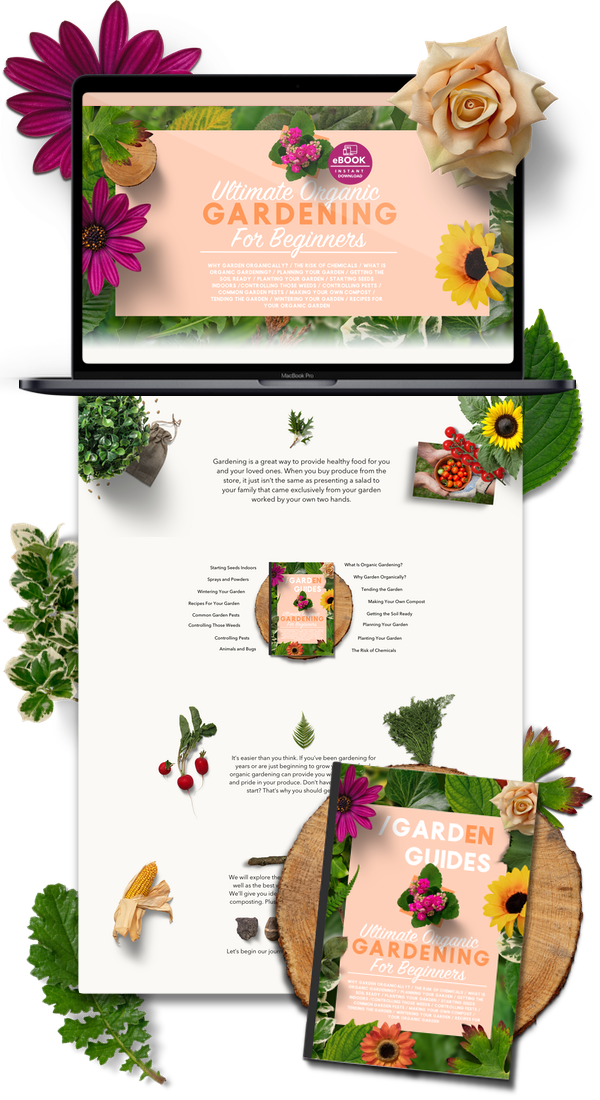 Garden Niche Shopify Website Business For Sale - Startup Streams