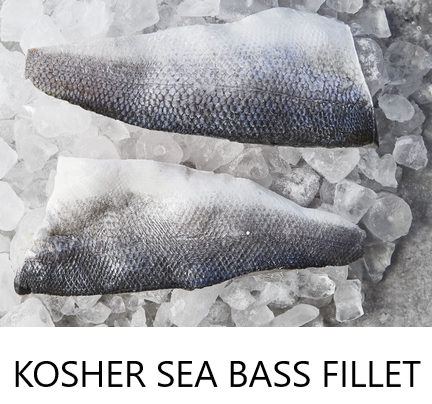 Kosher Sea bass Fillet