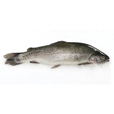Rainbow Trout (Whole) 280g