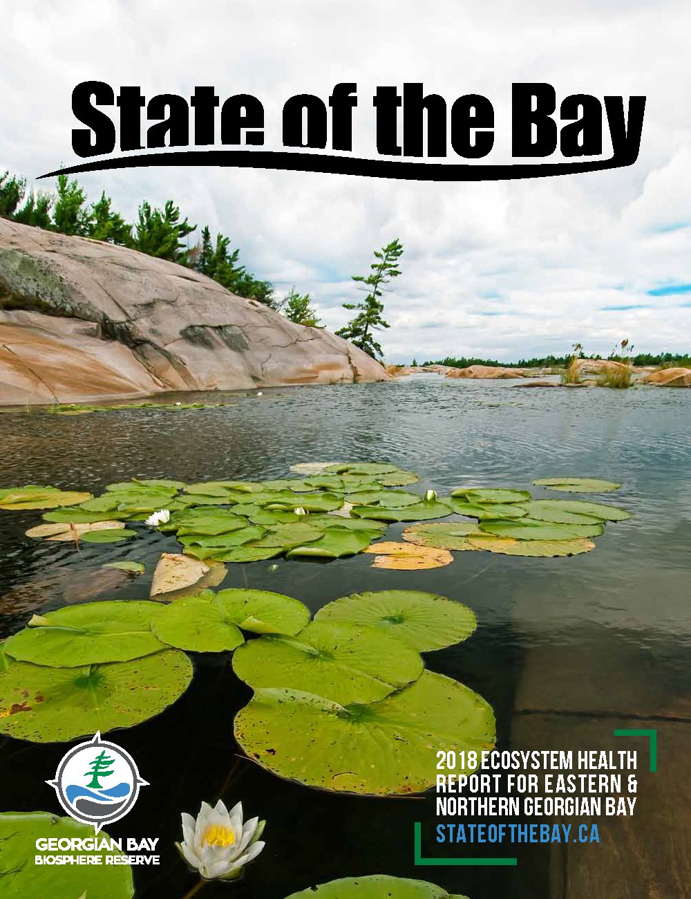 The State of the Bay Project