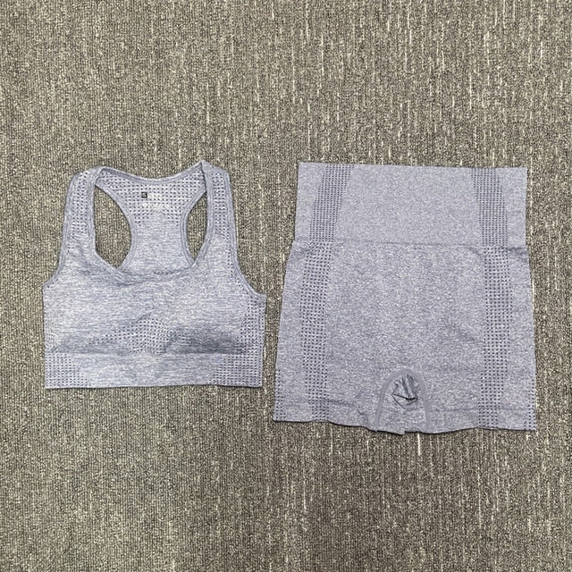 Seamless 2PCS Yoga Set