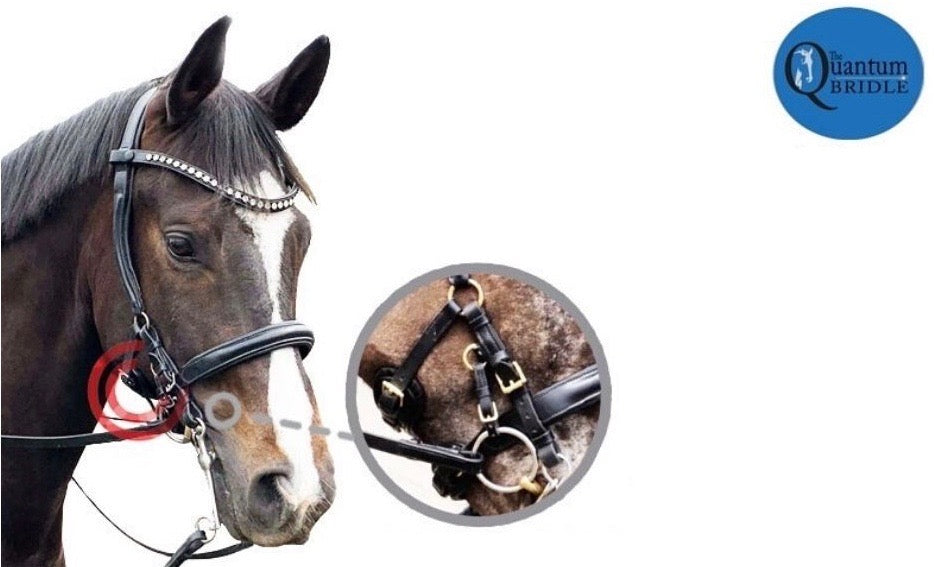 Double Bridle
