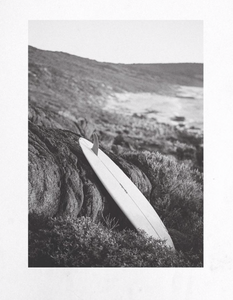 Moonshine - Single Fin 6'6