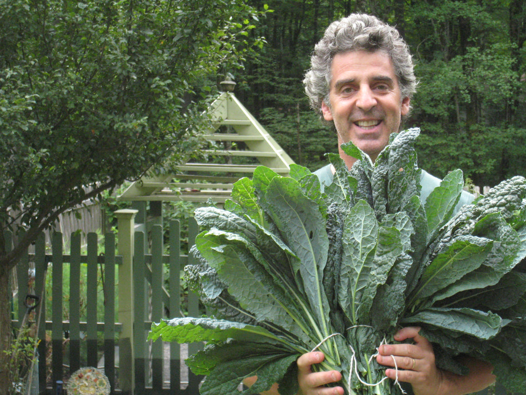 How to Ensure a Prolific Kale Crop From Your Garden