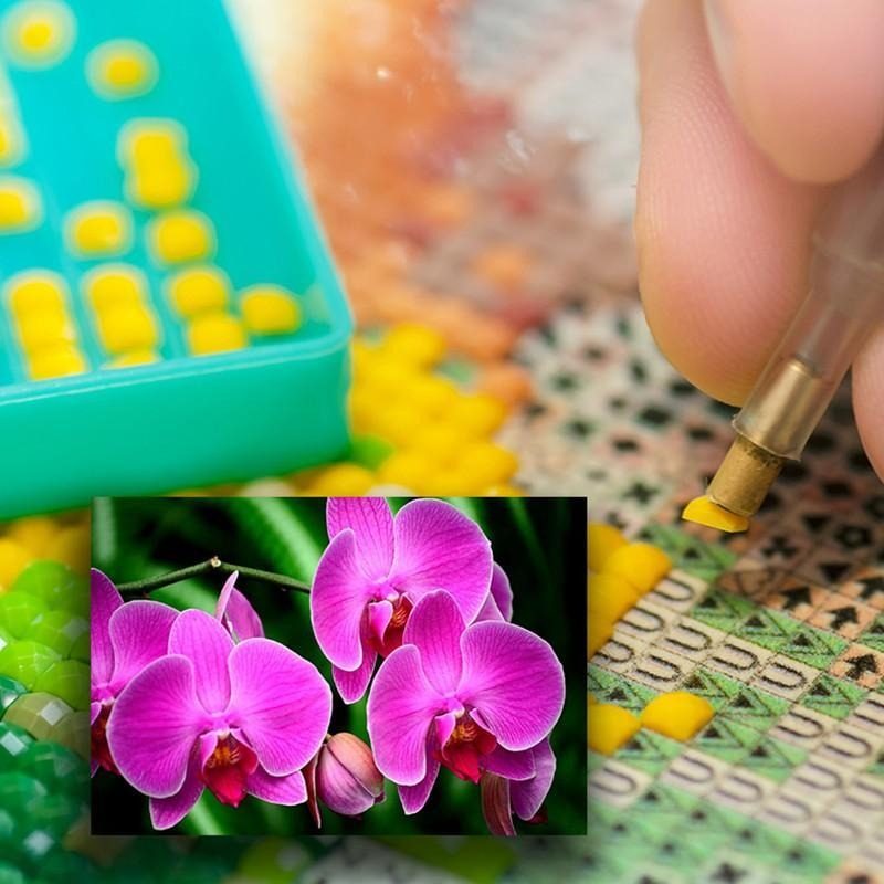 Diamond Painting - Orchids