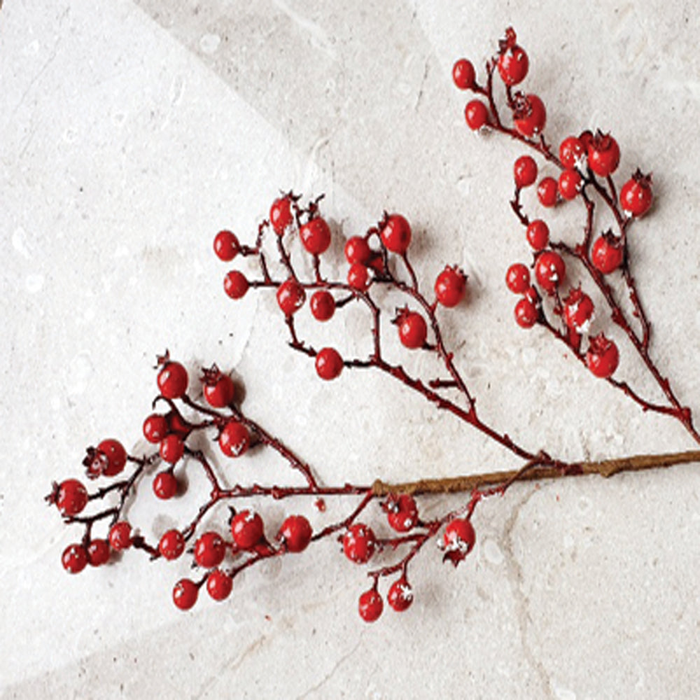 Red Berry Twig