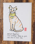 Cat and Dog Gift Cards by Makino Studios