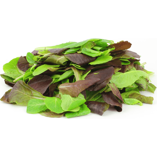 Organic Romaine Leaves Salad