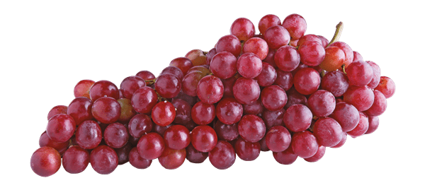 Red Baby Grapes