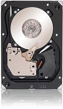 Seagate ST3300555SS-RFB