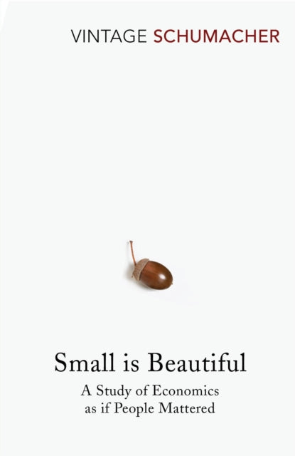 Small Is Beautiful : A Study of Economics as if People Mattered-9780099225614