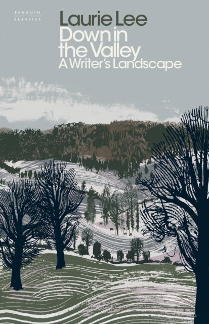 Down in the Valley : A Writer's Landscape-9780241411674