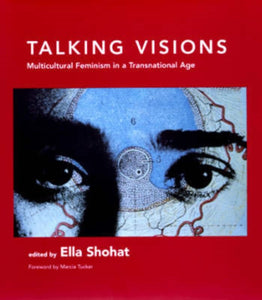 Talking Visions : Multicultural Feminism in a Transnational Age-9780262692618